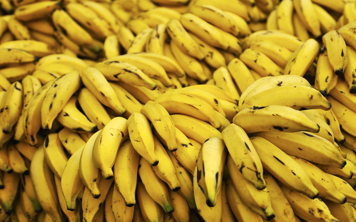 stack of fresh bananas-wide